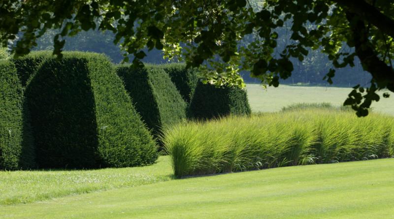 Entretenir ses haies de jardin pour un jardin d co for Jardin facile a entretenir